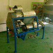 Установка машина выделения семян томатов, огурцов, перца, баклажан, кабачков фото