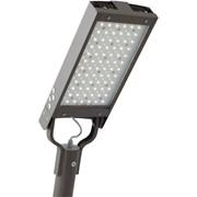 Уличный светильник LL-ДКУ-02-095-0101/2-65Д фото