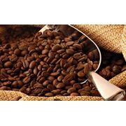 Кофе робуста купить в Молдове фото