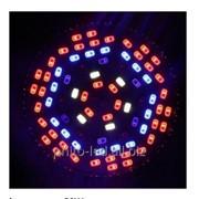 Фитолампа 50W направленного свечения c полным спектром фото