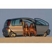 Автомобили компактвэны фото