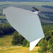 Беспилотный летательный аппарат (БПЛА) Pioneer S100 фото