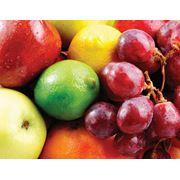 Фрукты и овощи на экспорт фото