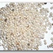 Перец белый горошек фото