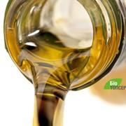 Сбор отработанного растительного масла фото