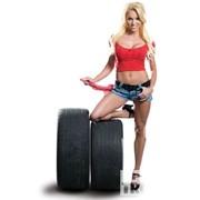Учебный курс Шиномонтаж и балансировка колес легковых автомобилей. Ремонт местных повреждений шин и камер. Ш 1. фото