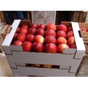 Яблоки Айдаред Молдова фото