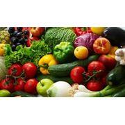 Услуги по таможенному оформлению фруктов и овощей (экспорт реэкспорт) производство столового винограда сорта Молдова Подробнее: http://8879.md.all.biz/ фото