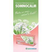 Лекарства Сомнокалм