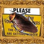 Средства против тараканов фото