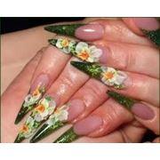 Наращивание ногтей: роспись китайская роспись лепка