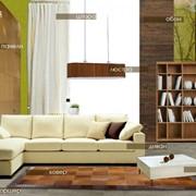 Экспресс-проект дизайна квартир фото