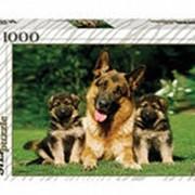 Пазлы 1000 Дружная семейка фото