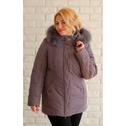 Зимняя короткая куртка 3594 фото