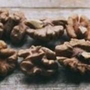 Очищеный грецкий орех фото