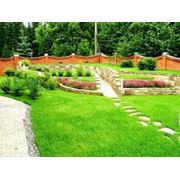 Ландшафтный дизайн сада в Молдове фото