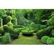 Благоустройство сада в Молдове быстро качественно недорого! фото