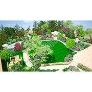 ландшафтный дизайн сада участка территории у дома проектирование визуализация проектовустановка систем полива и освещения устройство водоемов фото