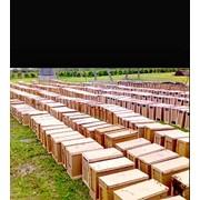 Ящики для пчелопакетов фото
