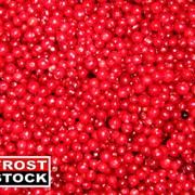 Замороженные ягоды. фото