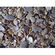 Ракушка шлифованная морская в перемешку с плоской галькой 2-5 мм фото