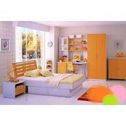 Мебель 8204+B фото