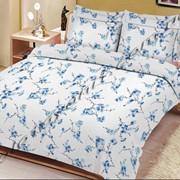 Ткани для постельного белья (поликоттон) Производство: Пакистан фото