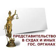 Представительство интересов в государственных органах фото