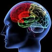 Спиральная компьютерная томография головного мозга фото