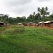 Камерун фото