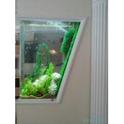 Услуги по изготовлению аквариумов фото