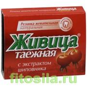 Резинка Живица таежная с экстрактом шиповника №5х0,8 г фото