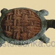 Чистильщик обуви Черепаха BR-2360 фото