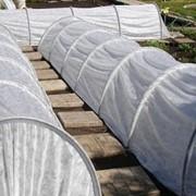 Парник «Подснежник» 6 метров со скидкой 40% фото