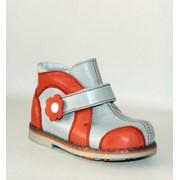 Ботинки для девочек модель 219 фото