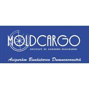 Asigurare Responsabilitate profesionala in Moldova фото