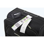 Страхование авиа-багажа фото