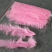 Перья розовые 11-15 см 50 шт 570261 фото