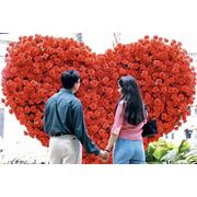 День Св. Валентина в Болгарии фото