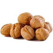 Орехи фото