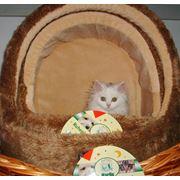 Домики для кошек и собак мягкие и плетеные. фото