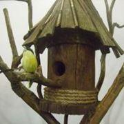 Скворечники кормушки для птиц деревянные фото