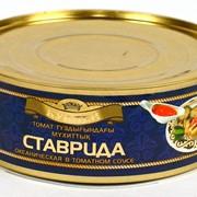 Ставрида океаническая в томатном соусе фото