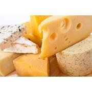Сырные продукты фото