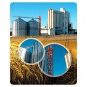 Багер-элеваторы, Сельхозтехника, мукомольное оборудование, Yasar Group, Яшар Груп, Сельхозтехника фото