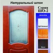 Двери межкомнатные шпонированные в Молдове фото
