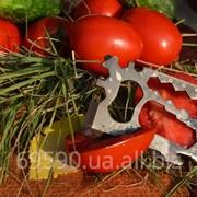 Мультитул кредитка. Нож Urban фото