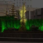 Подсветка отдельных элементов сада фото