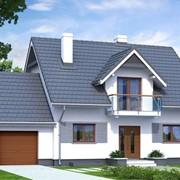 Проект дома «Тенорит 4» фото