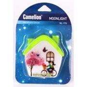 Camelion NL-173 ночник 0.5W 4LED 75x75x60 Домик 220V, пластик, выкл. фото